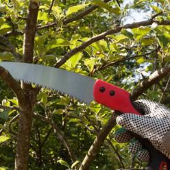 Pruning Saws